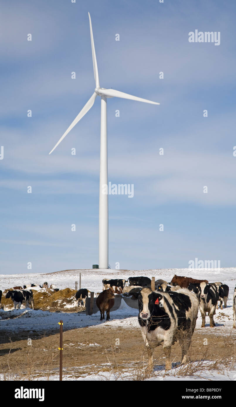 Les éoliennes en milieu rural au Michigan Photo Stock