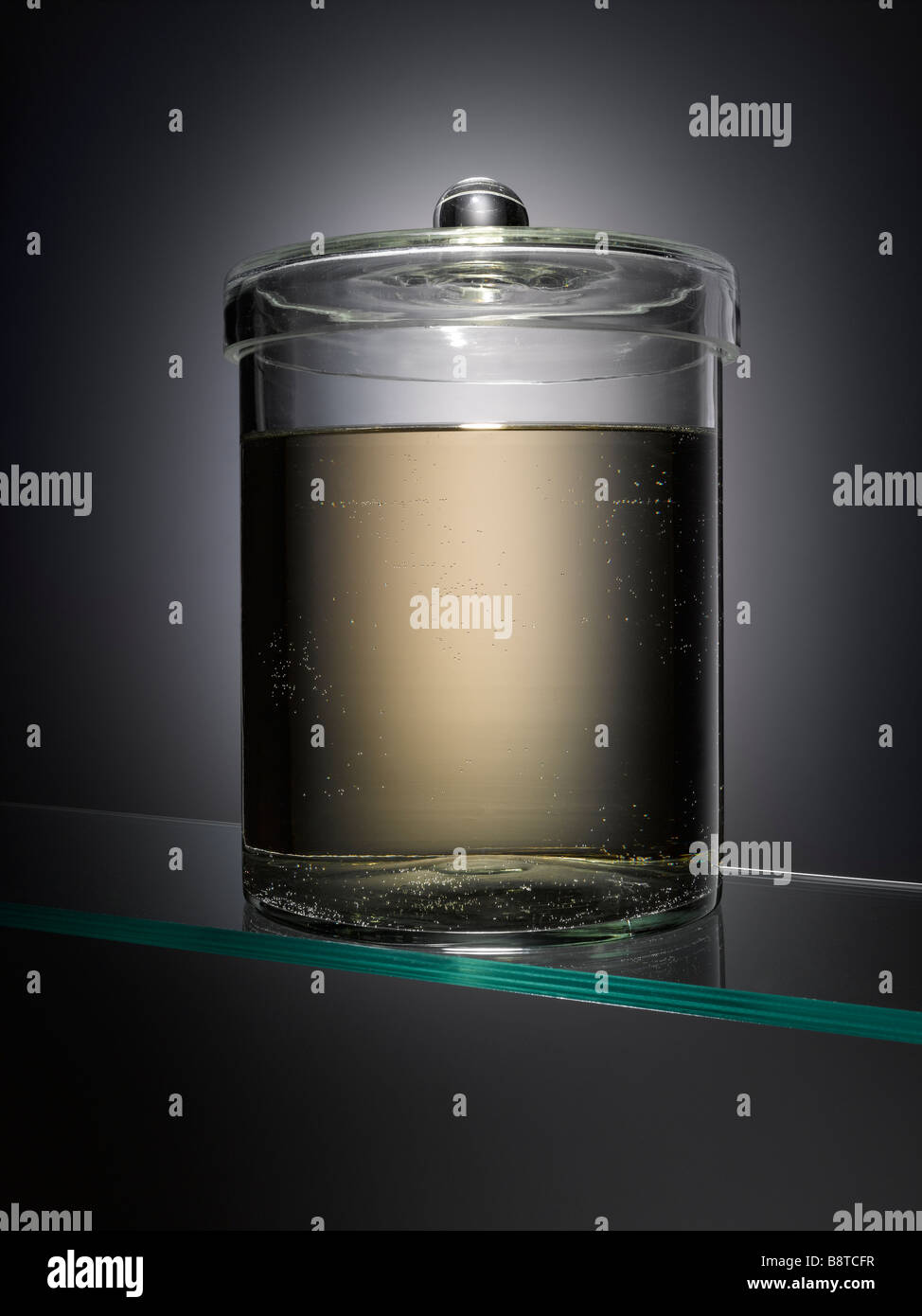 Un spécimen vide jar Banque D'Images