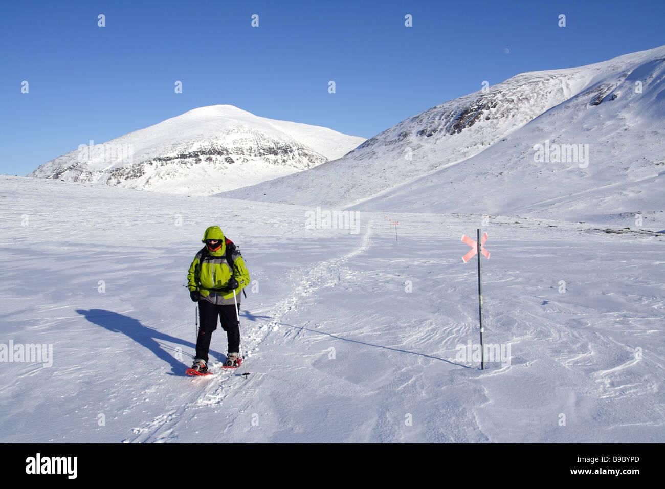 Un randonneur en raquettes femelle dans la Kungsleden Photo Stock