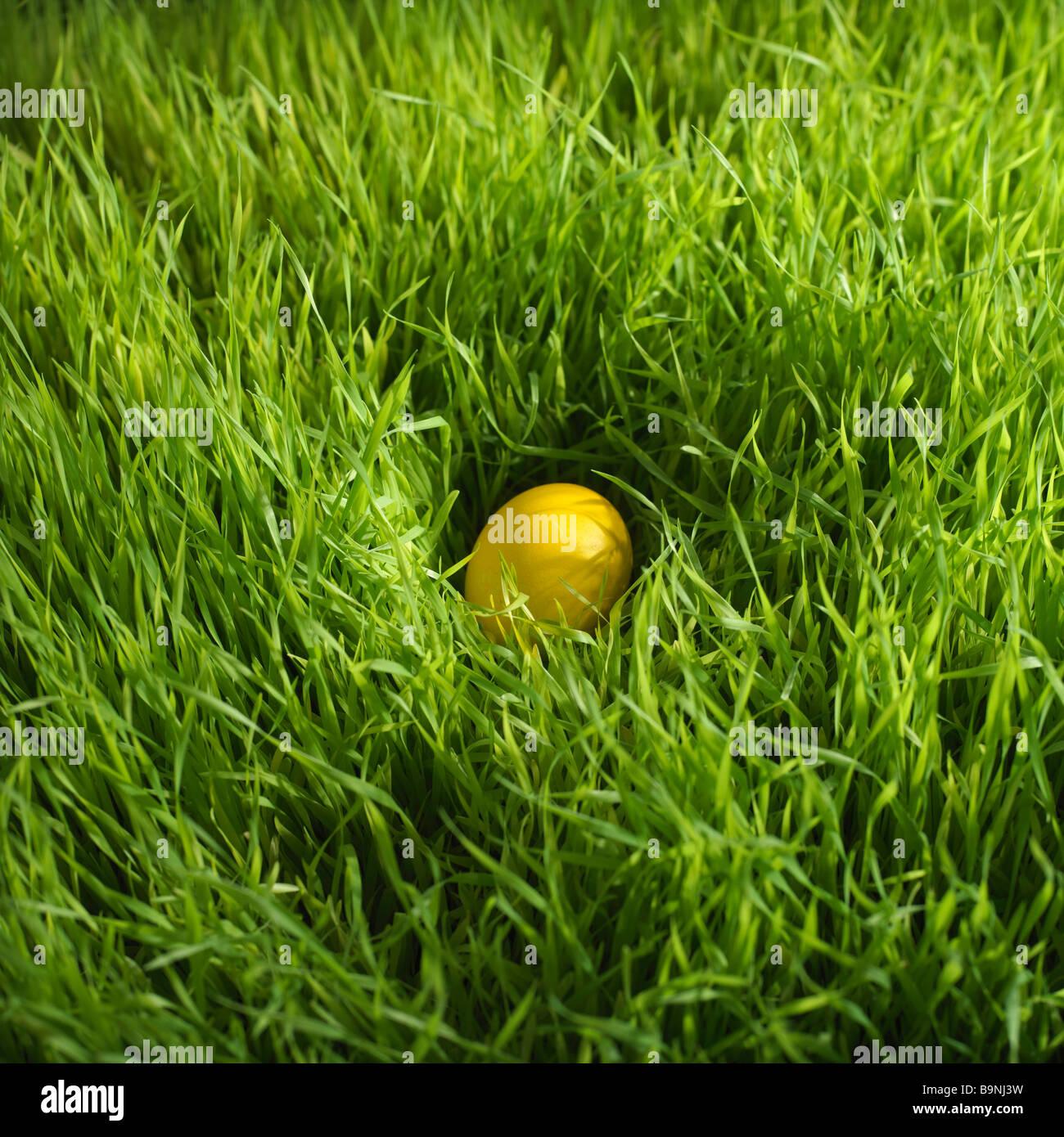Oeufs de Pâques colorés cachés dans l'herbe Photo Stock