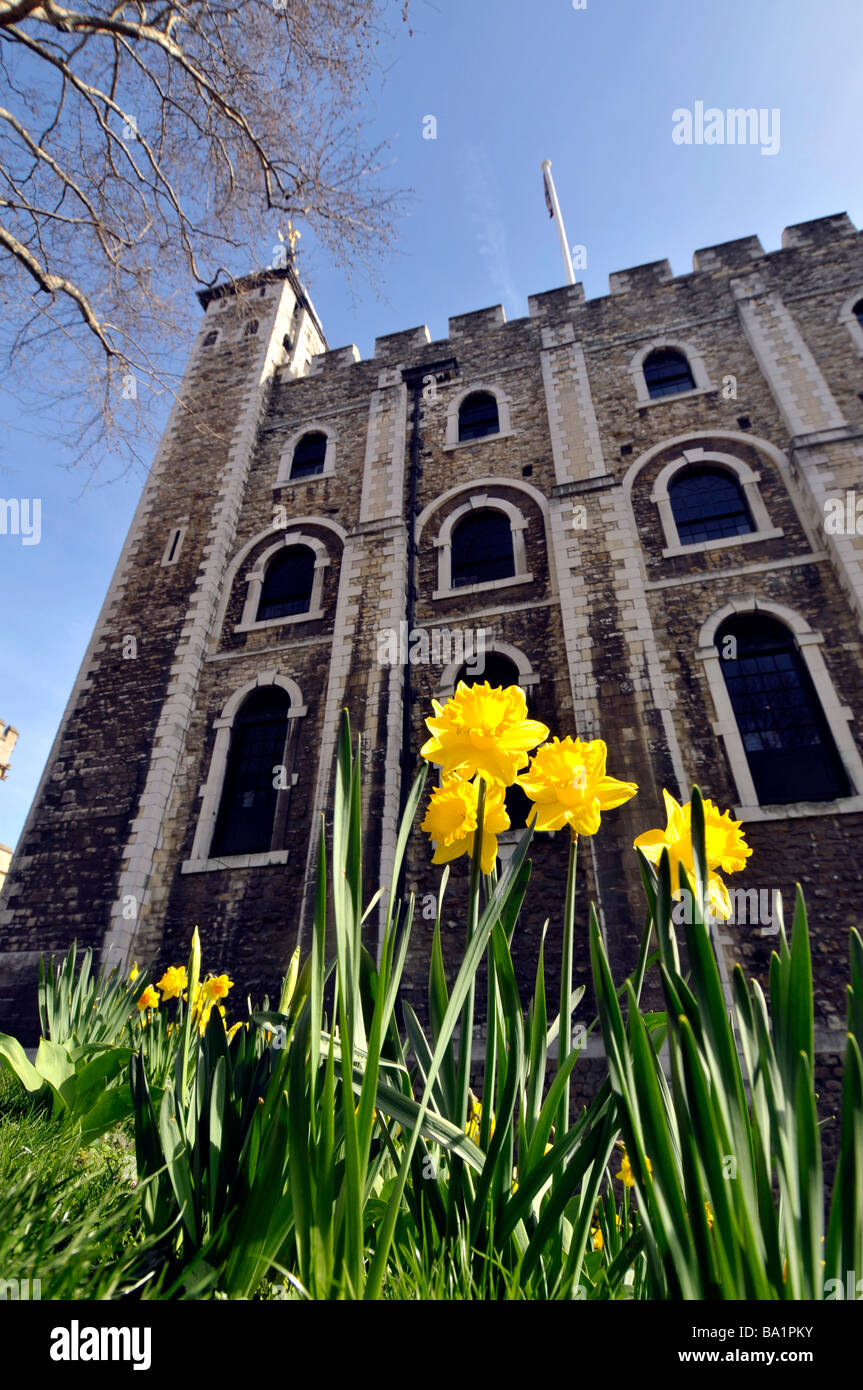 Tour de Londres, Londres, Angleterre, Royaume-Uni Banque D'Images