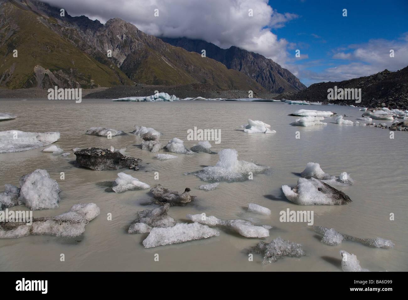 Le lac Glacier Tasman Mount Cook Nouvelle Zélande Photo Stock