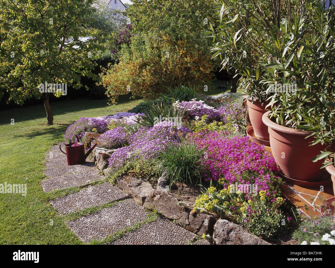 Arbre En Pot Terrasse fleur fleurs jardin lit rocaille façon étés prairie arbres