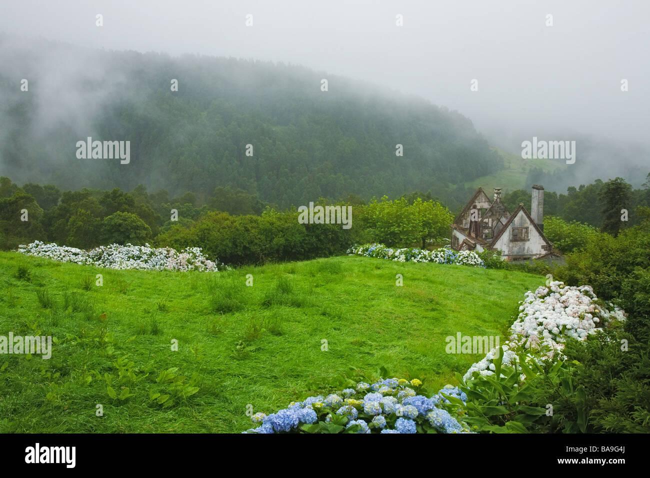 Vue sur vieux et abandonnez la maison avec de la brume sur la forêt de l'île de São Miguel, Açores, Photo Stock