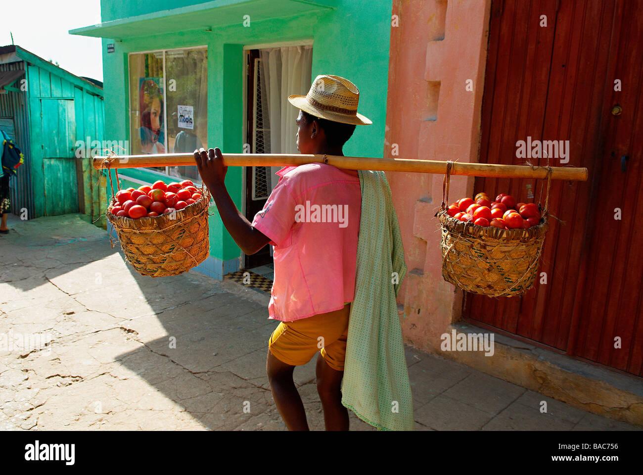 Madagascar, Région Haute Matsiatra, Fianarantsoa, transporteur de tomate Photo Stock