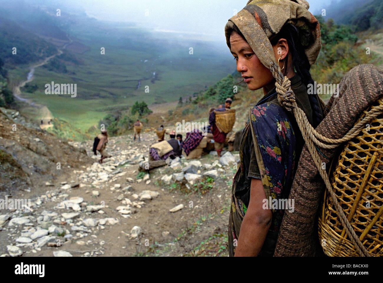 Le Népal, porteurs (transporteurs ou porteurs), Himalayans pour transporter gear Photo Stock