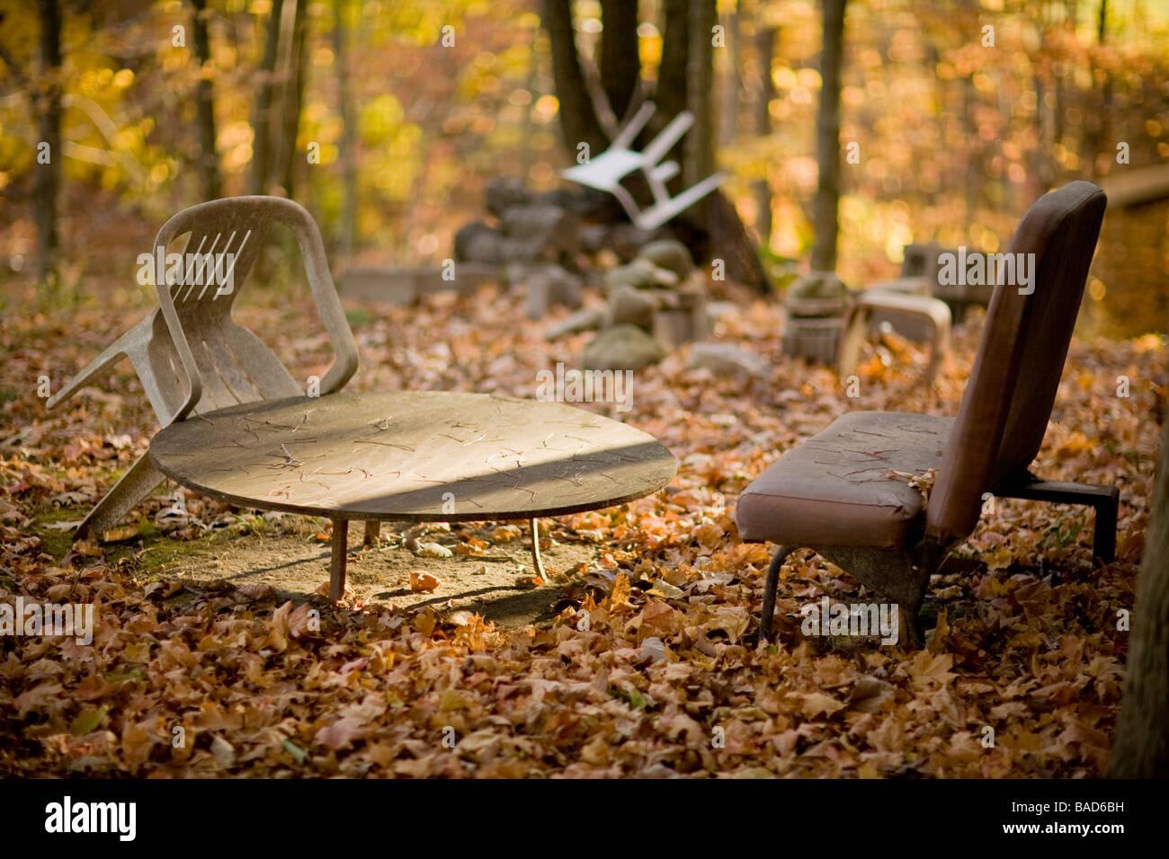 Meubles abandonnés dans les bois Photo Stock