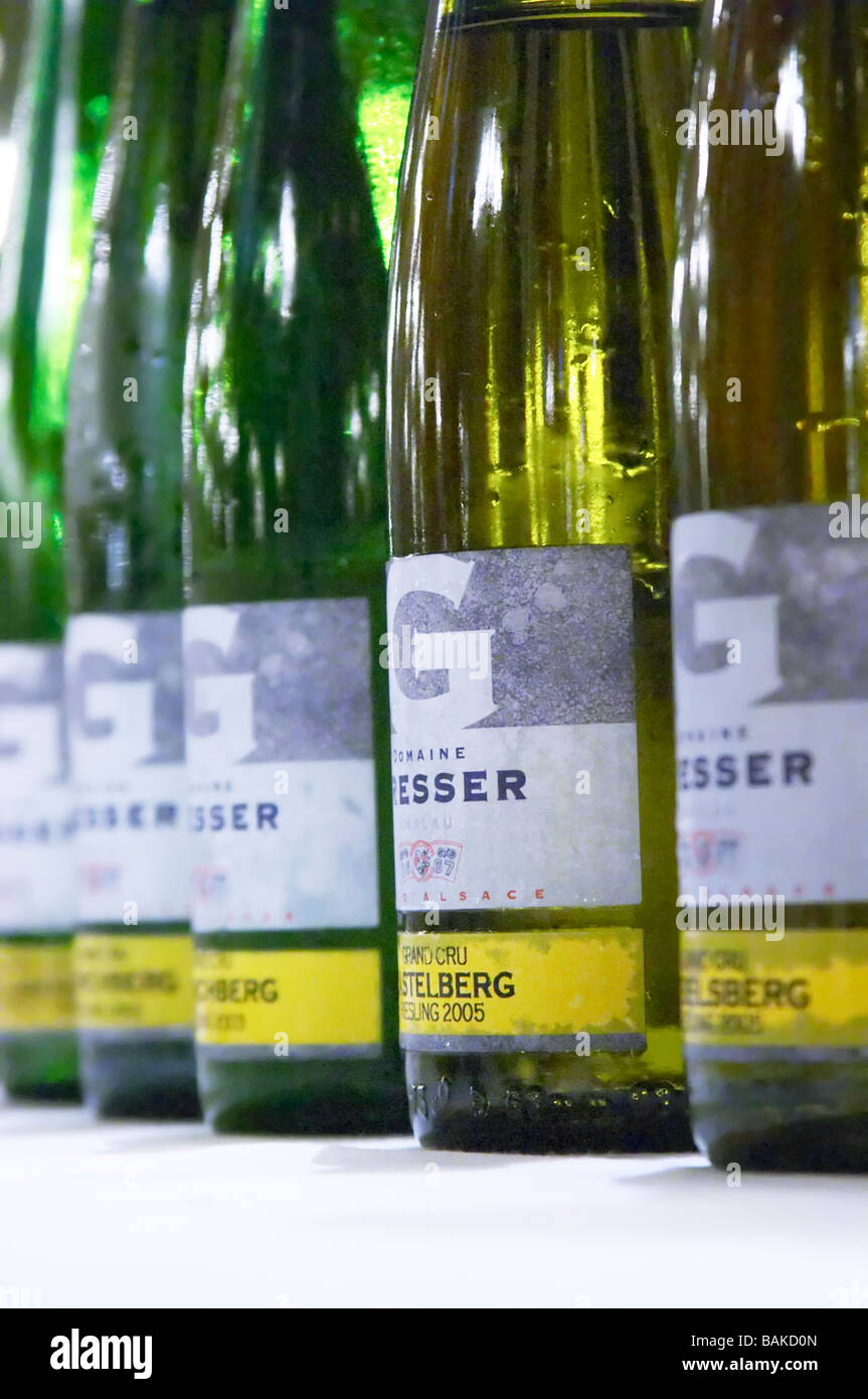Le riesling domaine remy gresser andlau alsace france Photo Stock