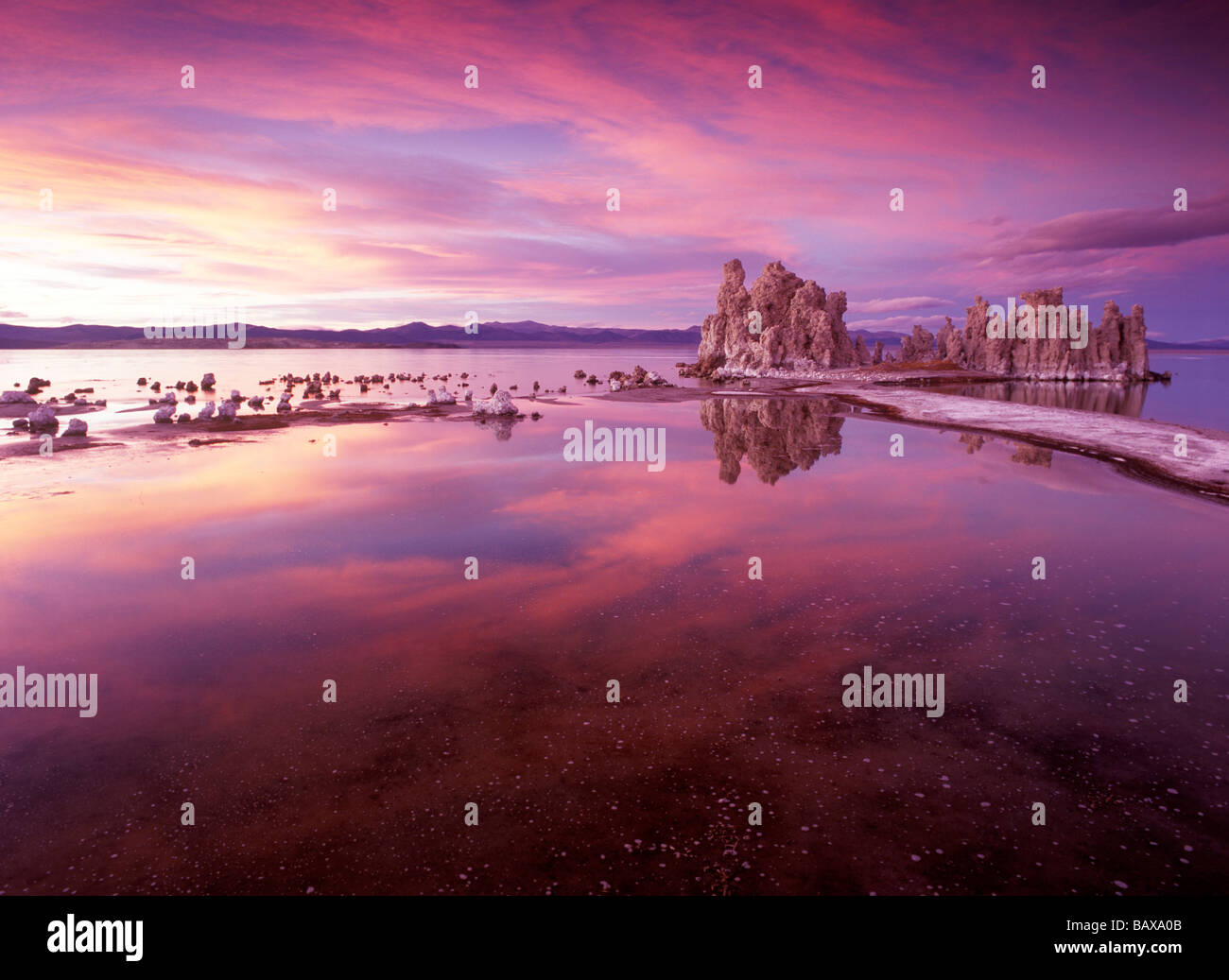 Mono Lake sectes Photo Stock