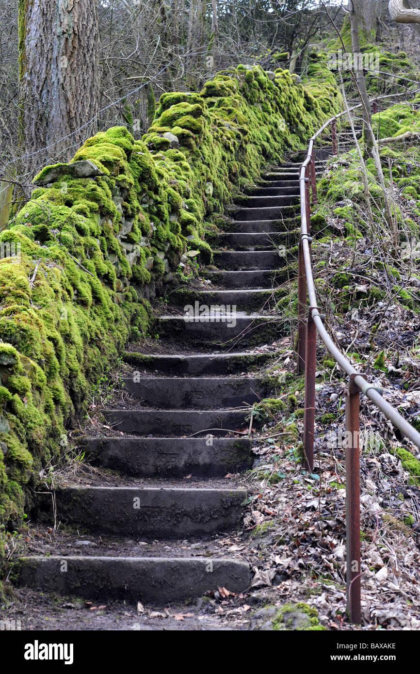 Un escalier en pierre menant vers le haut, Yorkshire Dales UK Photo Stock
