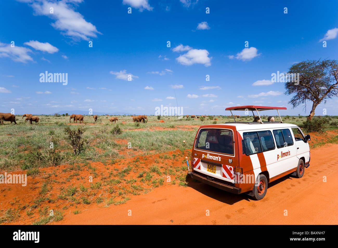 Un bus de touristes en safari regarder famille de brousse africaine éléphants dans la savane, le parc Photo Stock