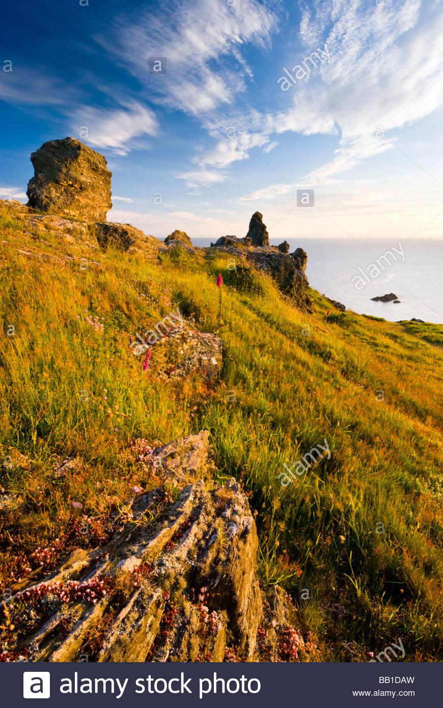 Rochers sur la côte près de Soar Mill Cove, South Hams, Devon, Angleterre du Sud. Photo Stock