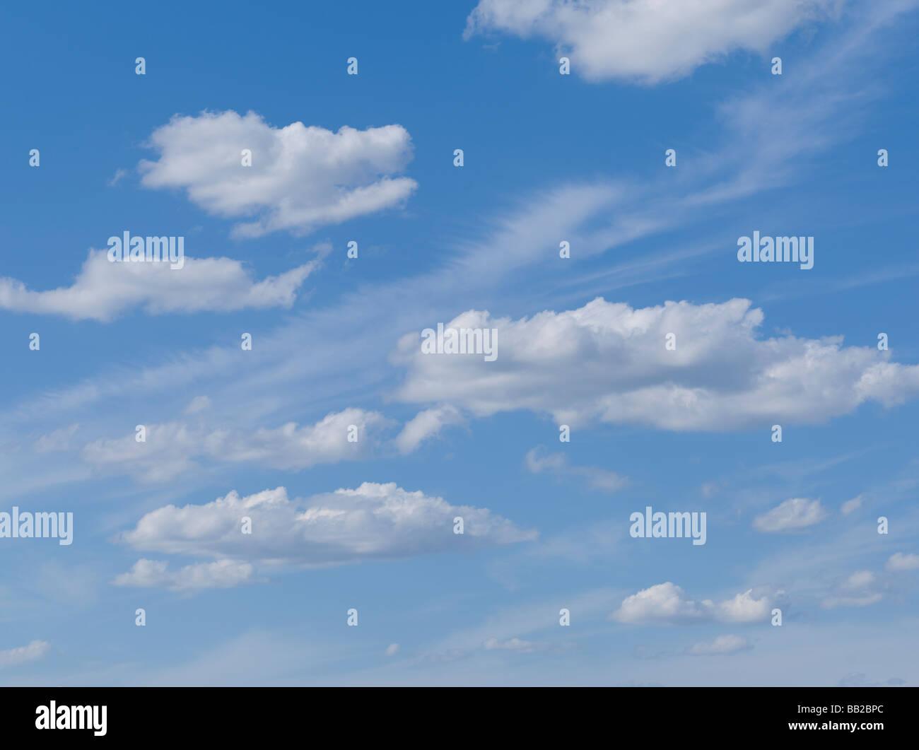 Ciel bleu avec des nuages gonflés Photo Stock
