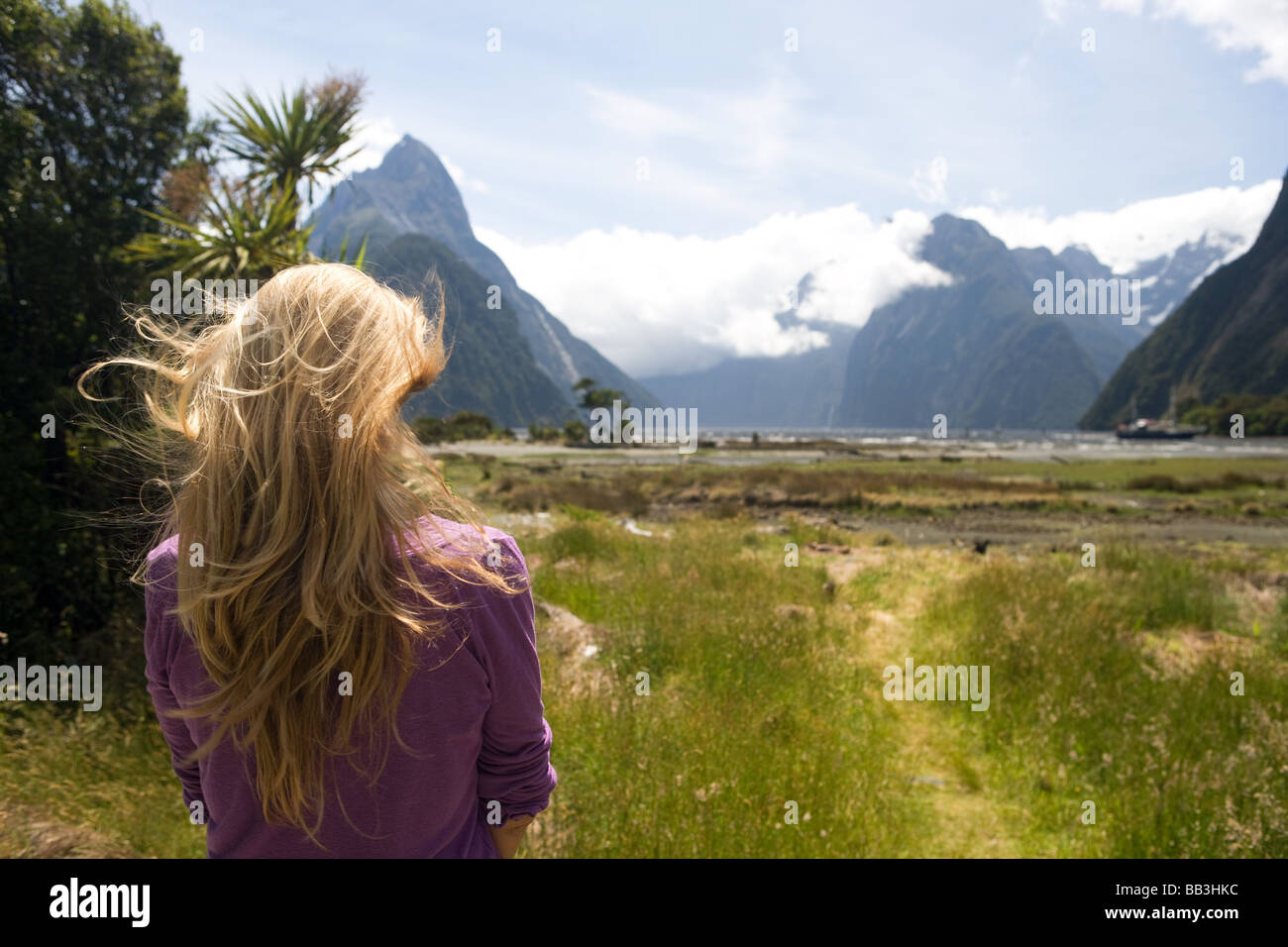 Milford Sound ile sud Nouvelle Zelande Photo Stock
