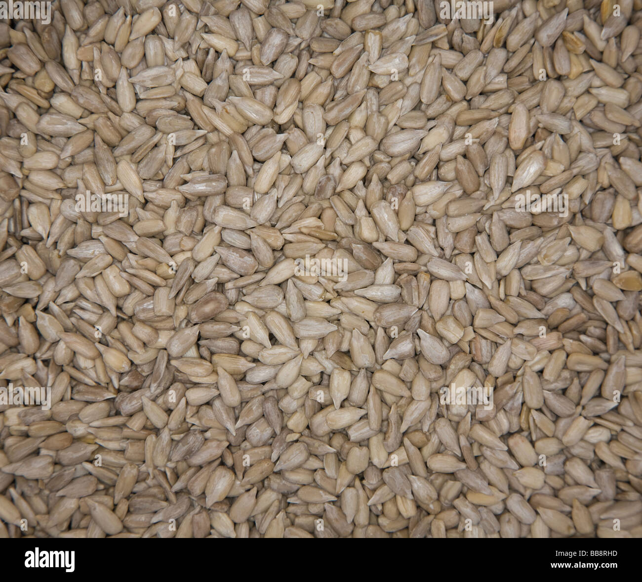 Graines de 'sunflower' Collation santé Photo Stock