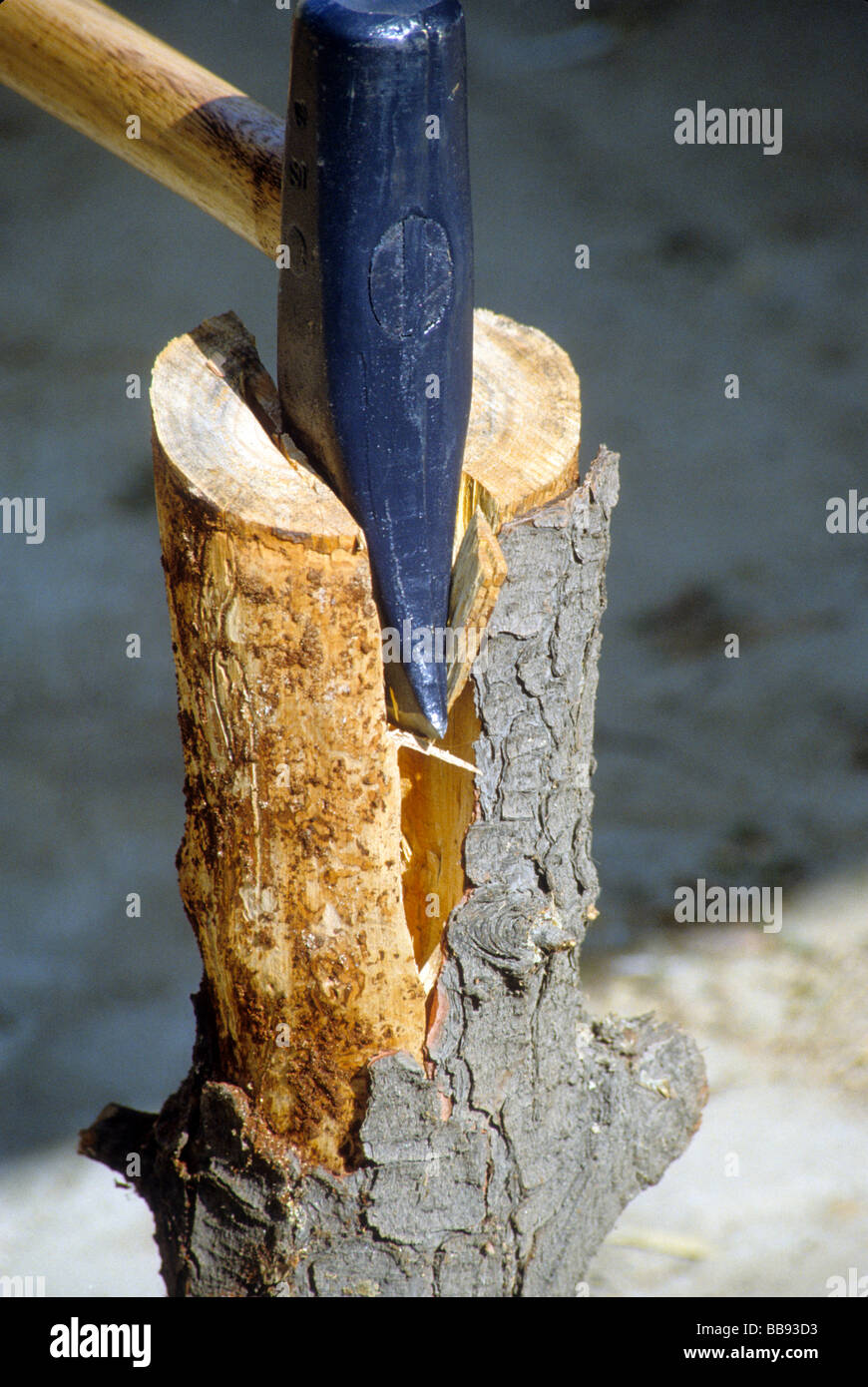 hacher couper en coin hache fendre du bois log machine. Black Bedroom Furniture Sets. Home Design Ideas