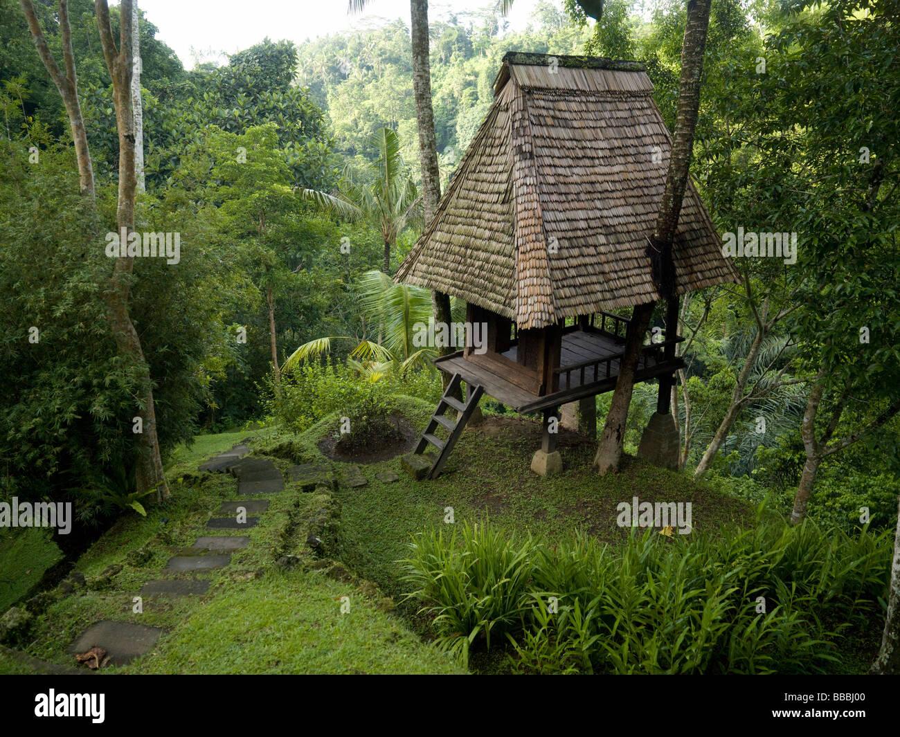 cabane en bois dans la for t banque d 39 images photo stock 24227168 alamy. Black Bedroom Furniture Sets. Home Design Ideas