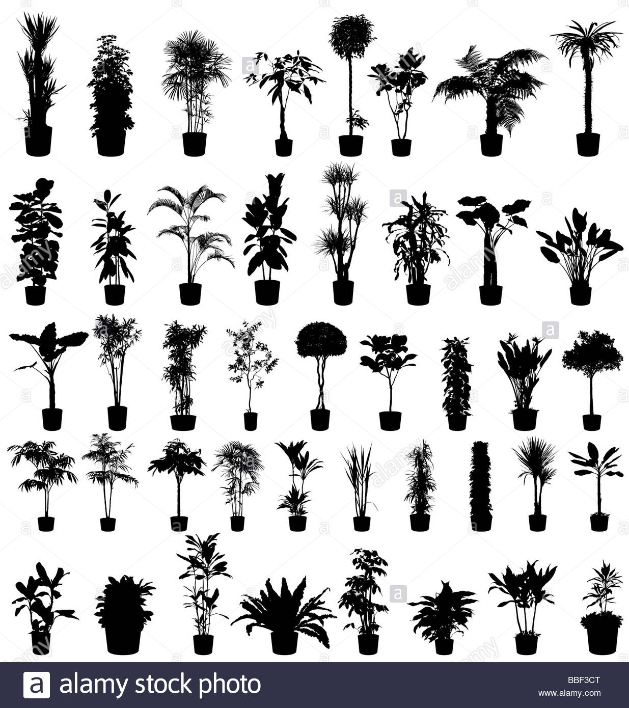 Grands arbres et plantes silhouettes collection Photo Stock