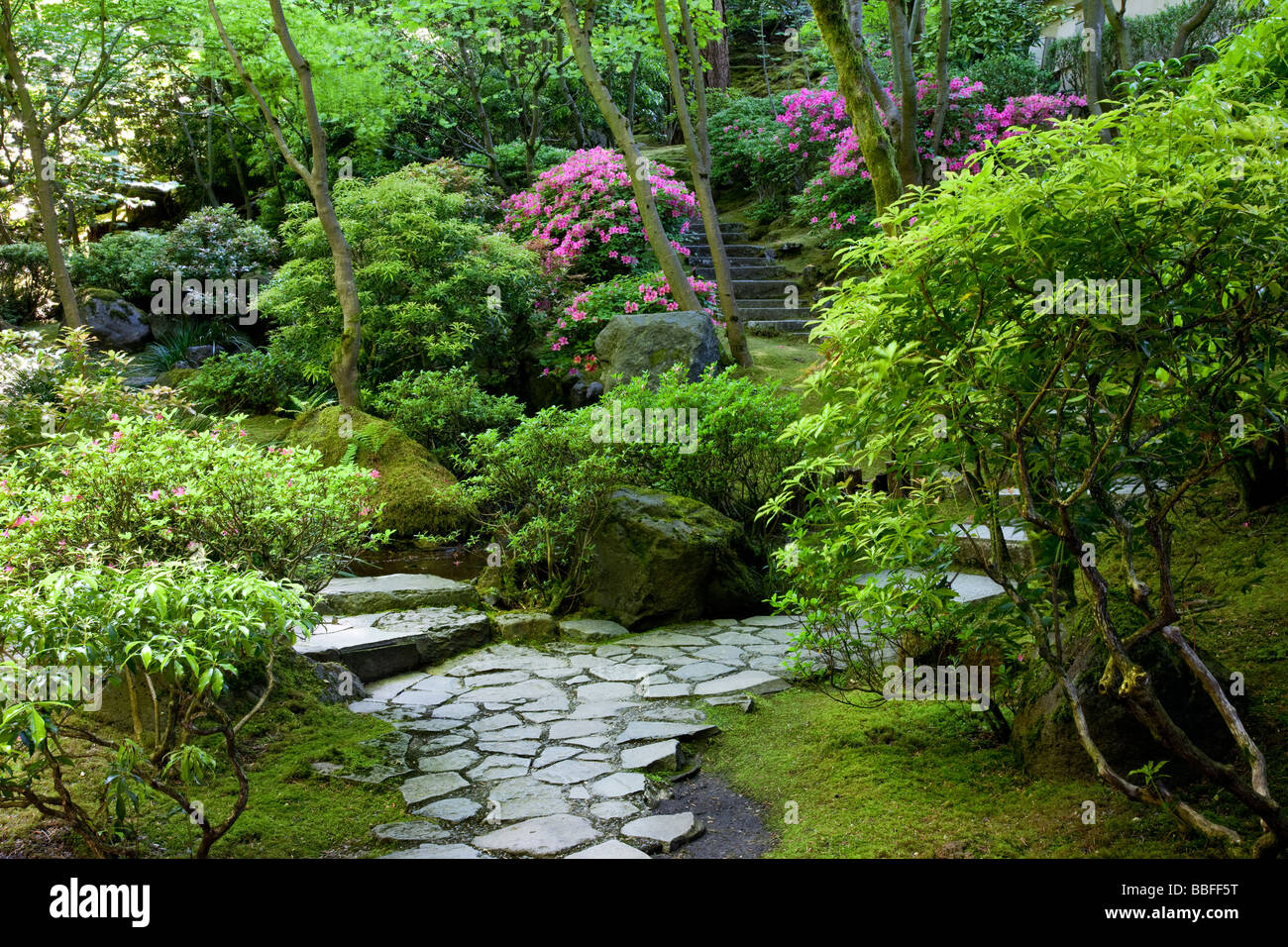 Le jardin japonais de Portland, Oregon USA Photo Stock