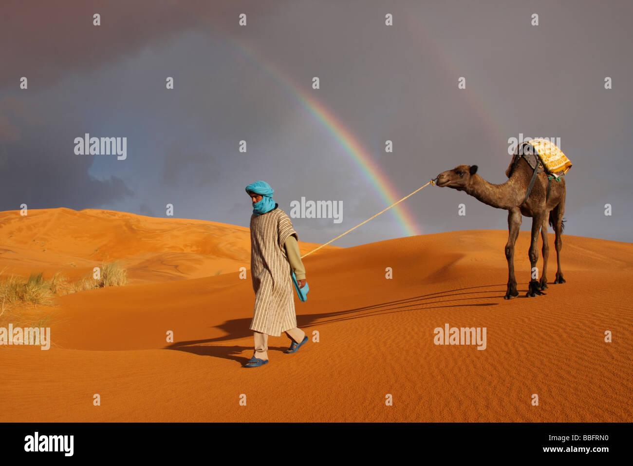 Afrique, Afrique du Nord, Maroc, Sahara, Merzouga, Erg Chebbi, Berbère Tribesman menant Camel, arc-en-ciel dans le désert Banque D'Images