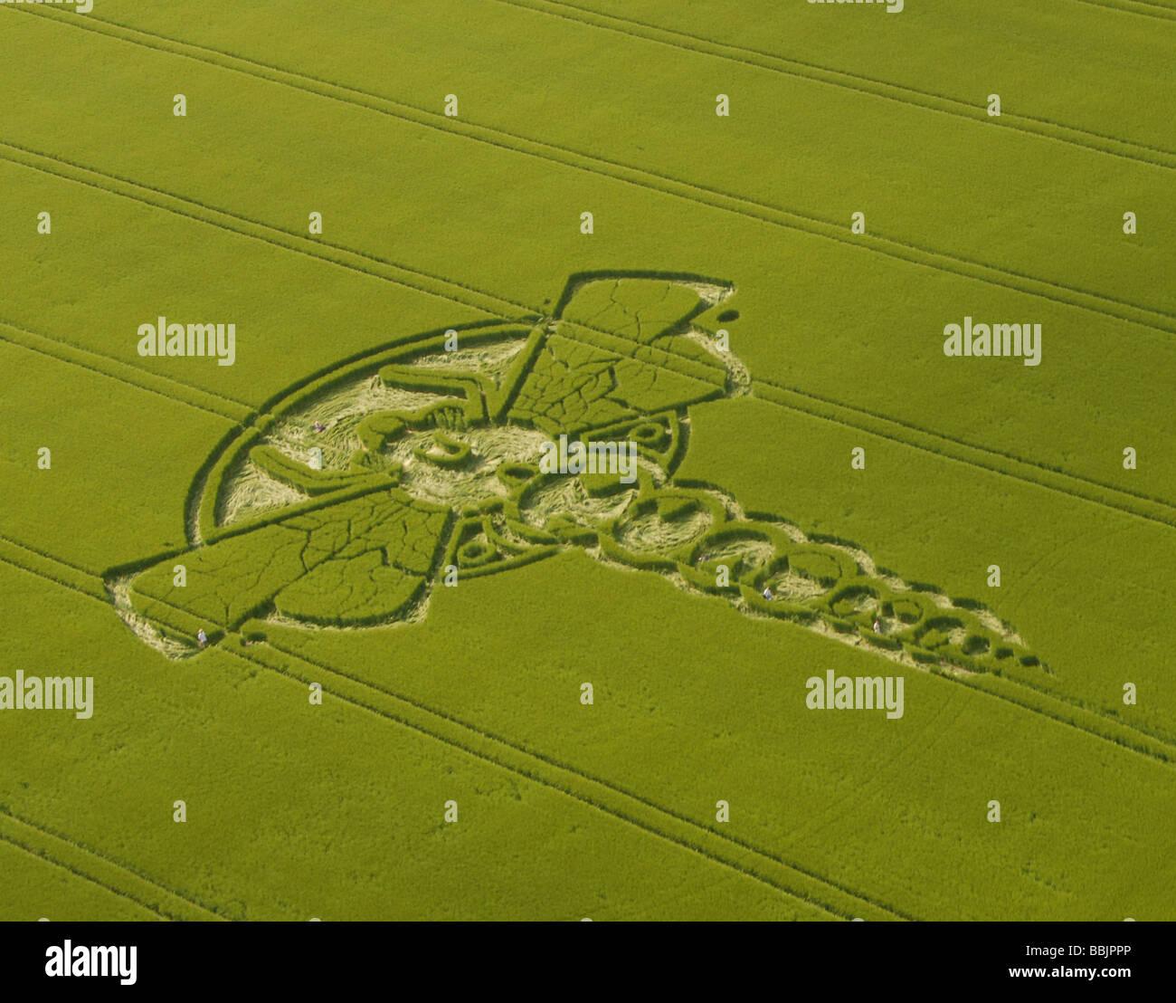 Vues aériennes de la Libellule 2009 Yatesbury Crop Circle, avec cinq personnes sur le terrain pour donner l'échelle. Photo Stock