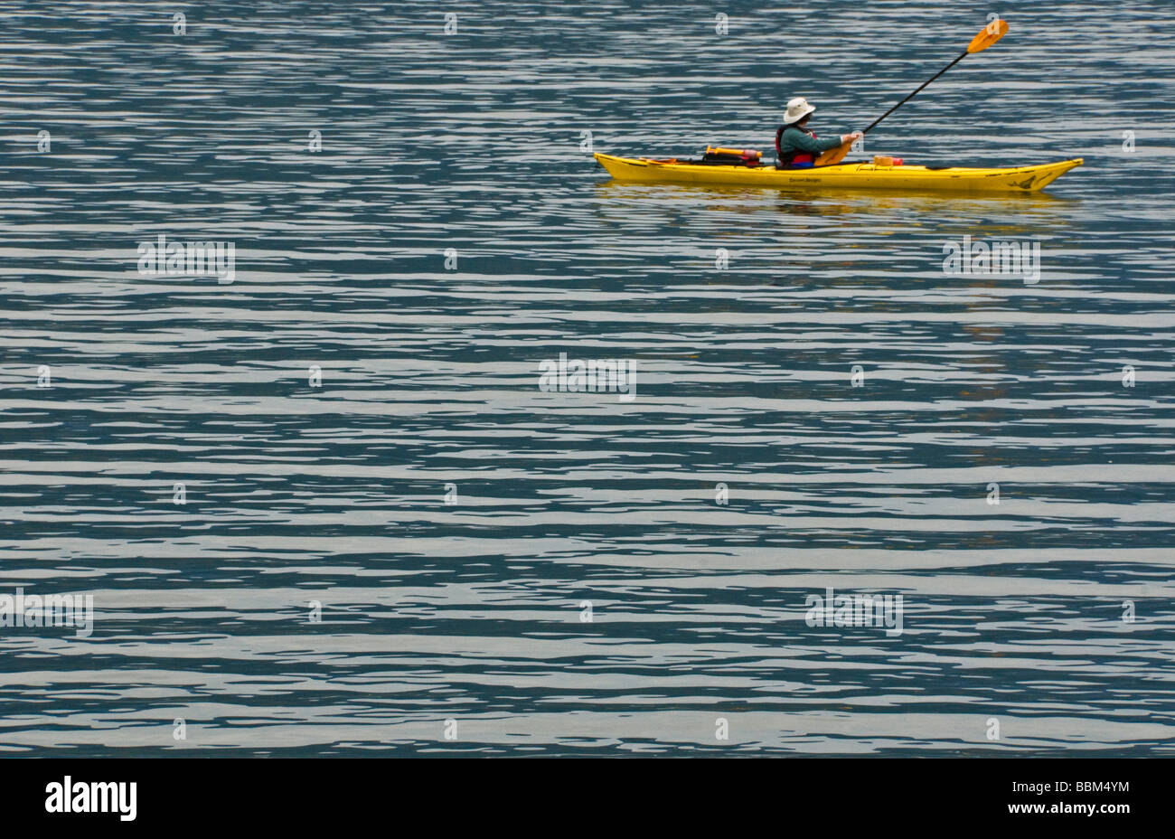 Kayak dans le Bras Indian North Vancouver Photo Stock