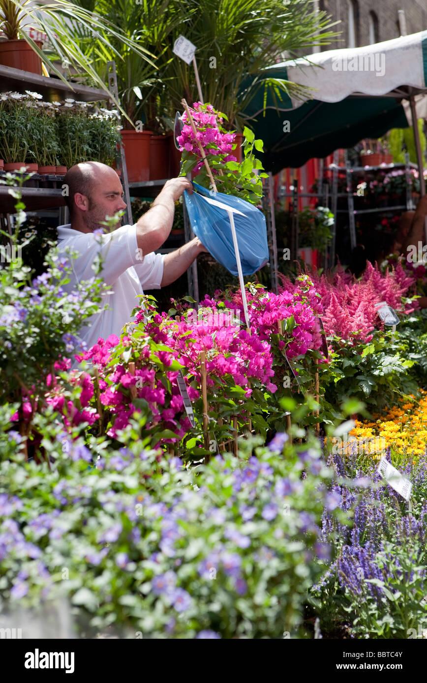 Columbia Road Flower Market, Londres Photo Stock