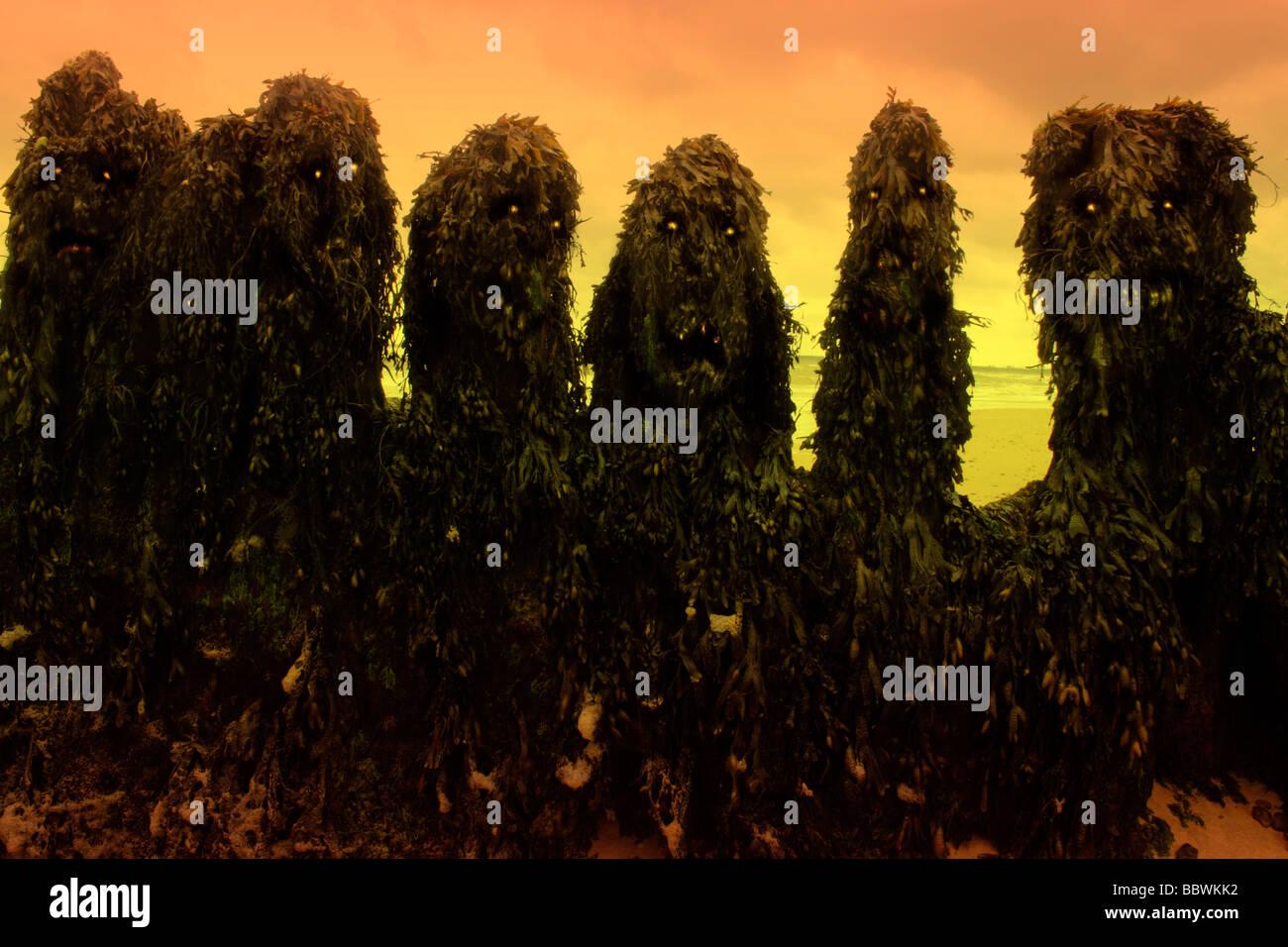 Monstres d'algues exotiques Photo Stock