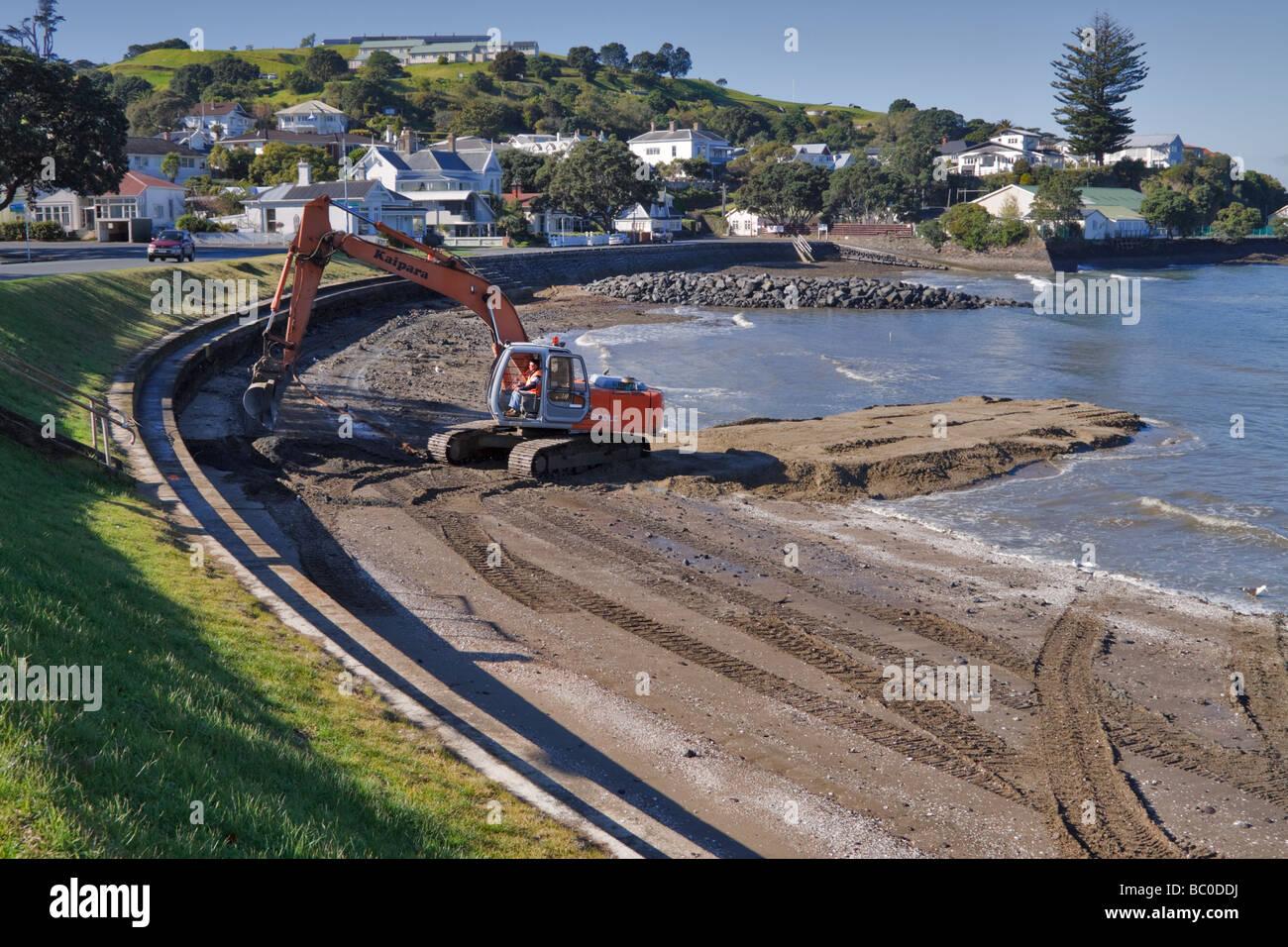 La régénération des plages, la baie de torpilles, Devonport, Nouvelle-Zélande Photo Stock