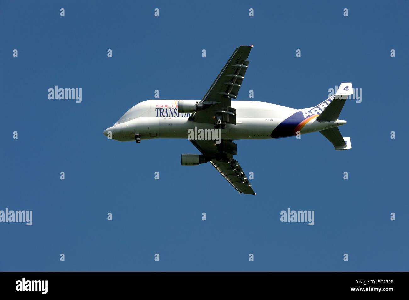 Avion de transport Airbus Beluga Photo Stock