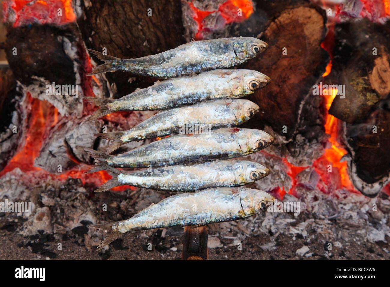 L'Espagne ou des brochettes de sardines espetos barbecueing sur feu ouvert Photo Stock