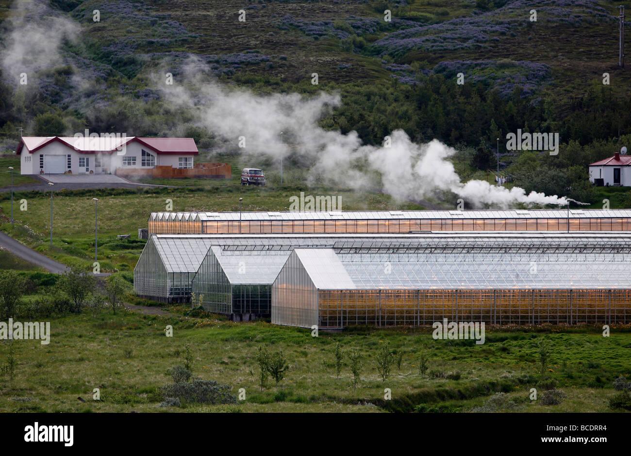 Les serres chauffées par l'énergie géothermique près de Husavík, Islande Photo Stock