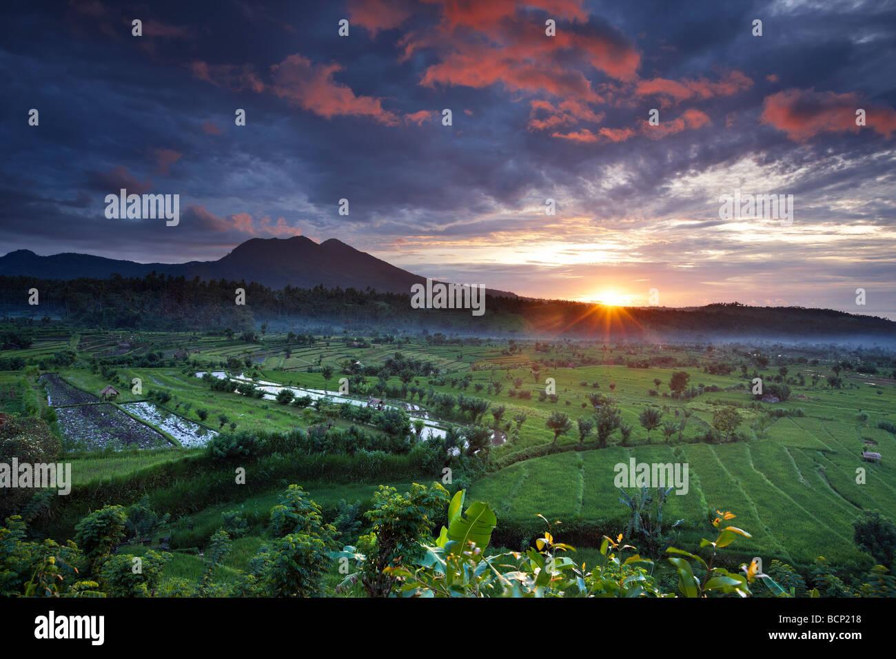 Les rizières en terrasses près de Tirtagangga à l'aube avec le soleil se lever sur le pic volcanique Photo Stock