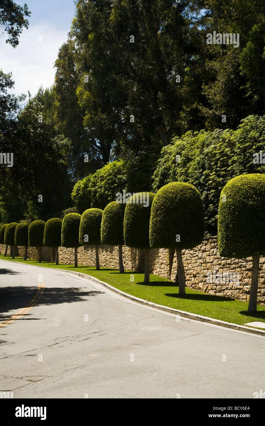 L'aménagement paysager Bel Air près de Beverly Hills, en Californie, États-Unis d'Amérique Photo Stock