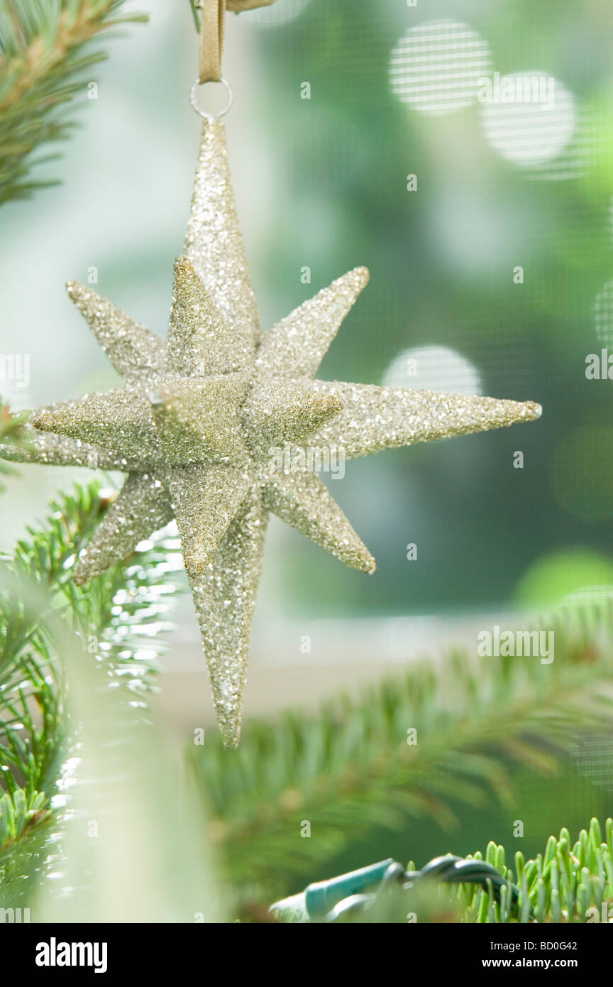 Star Christmas ornament Photo Stock