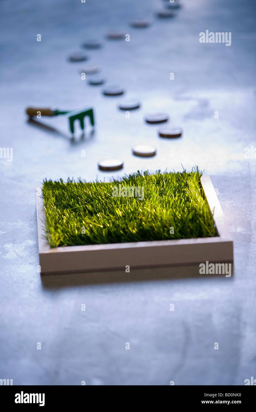 Petit coin de pelouse à l'intérieur Photo Stock