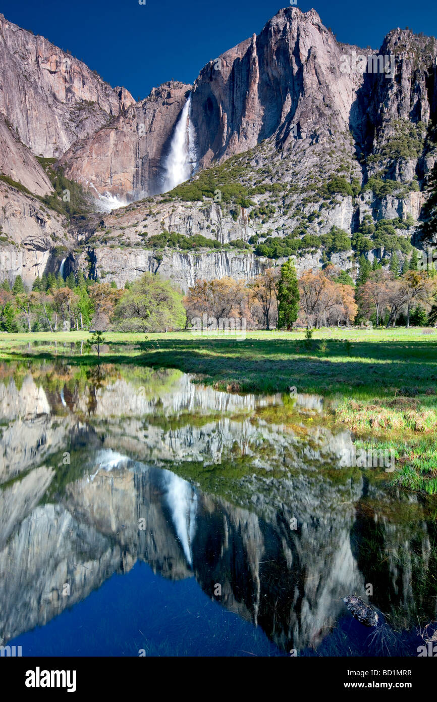Yosemite Falls reflète dans l'eau de la piscine du Parc National Yosemite en Californie Photo Stock