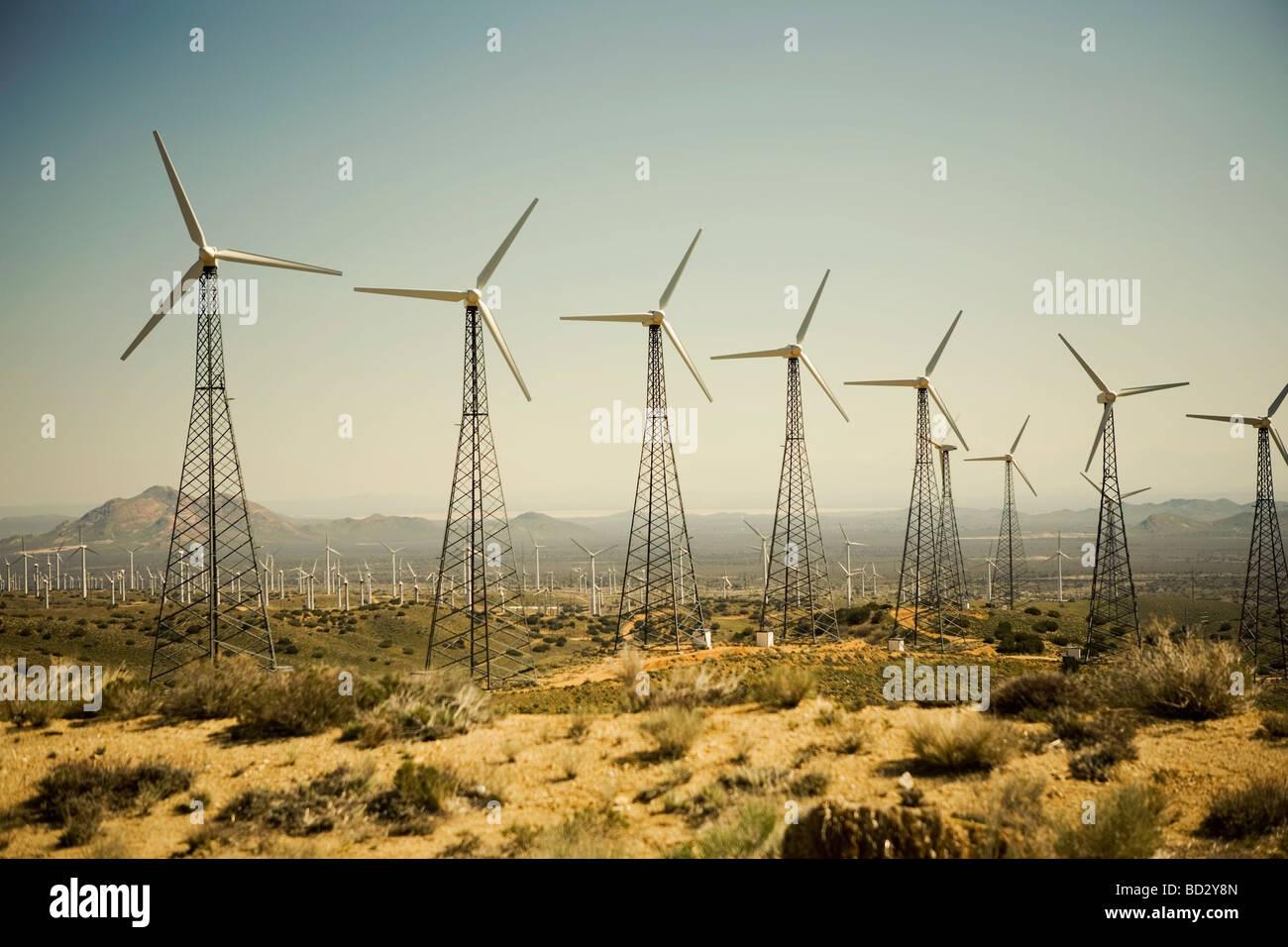 Les éoliennes produisant de l'électricité Photo Stock