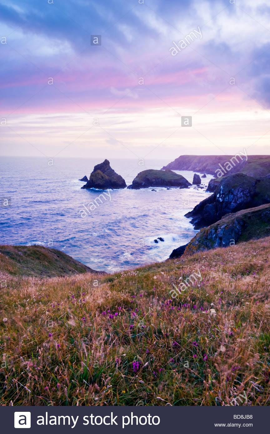 Kynance Cove, la péninsule du Lézard, Cornwall, Angleterre. Photo Stock