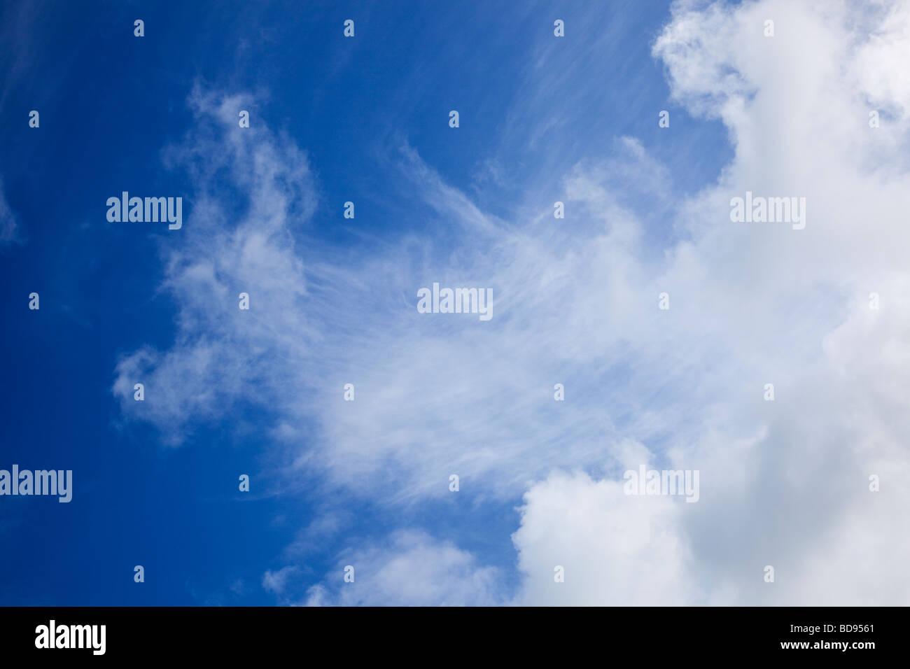Ciel bleu avec des nuages cirrus looking up Photo Stock