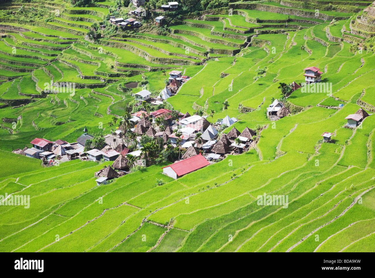 Terrasses de riz et de Batad village Province d'Ifugao le nord de Luzon aux Philippines Photo Stock