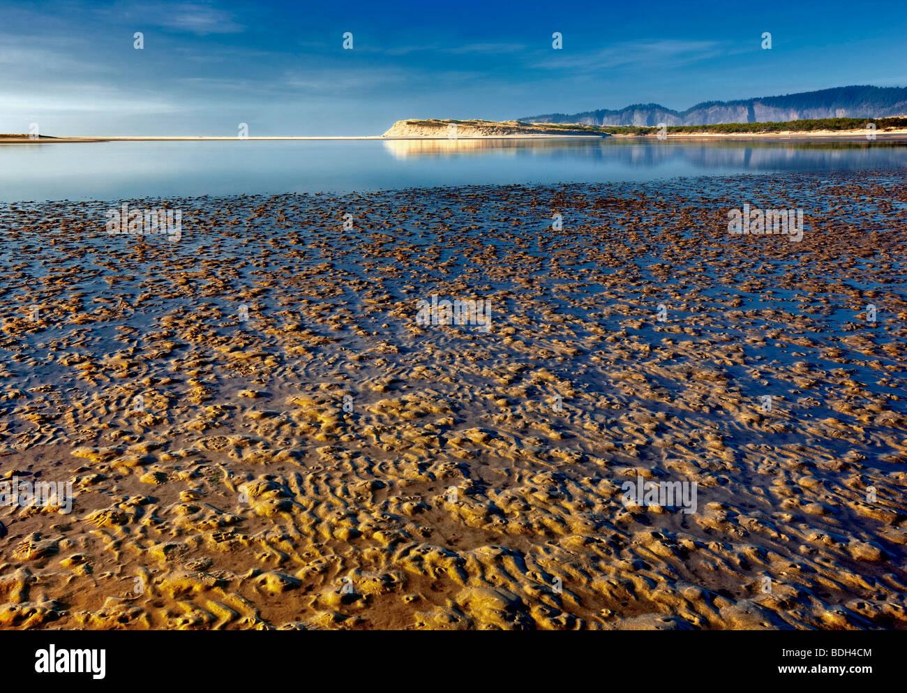 Marée basse à l'argile naturelle d'État Meyers à Whalen Island. Oregon Photo Stock