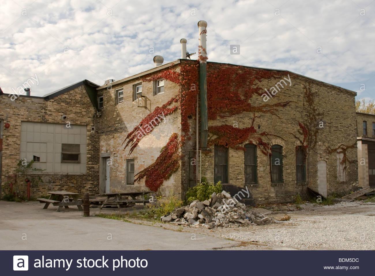 Vieux, de la construction, de l'abandonner, Ivy, cool, la brique, l'automne, l'automne, Photo Stock