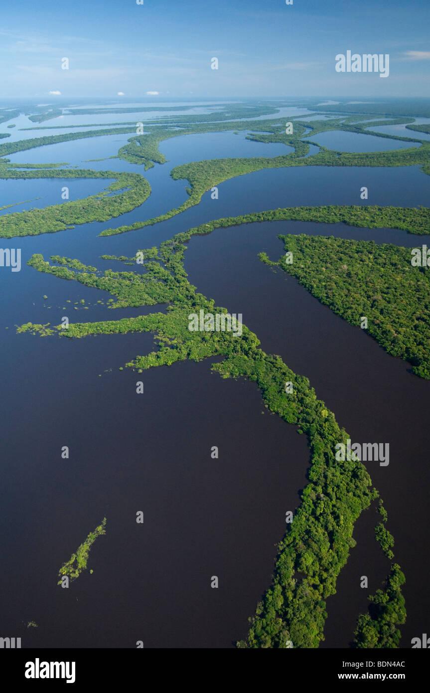 Forêt inondée, archipel Anavilhanas, Rio Negro, Amazone, Brésil AERIAL Photo Stock