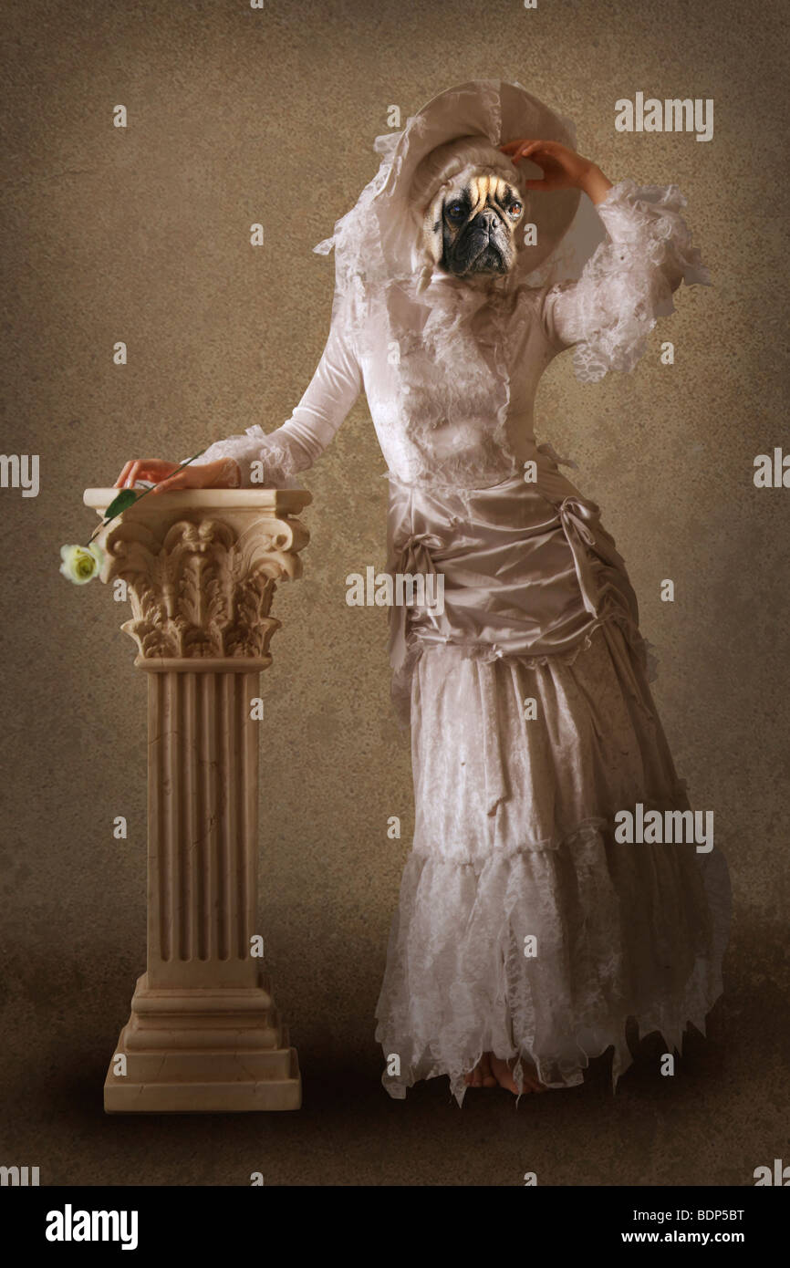 Chien surréaliste vêtue comme une dame Photo Stock