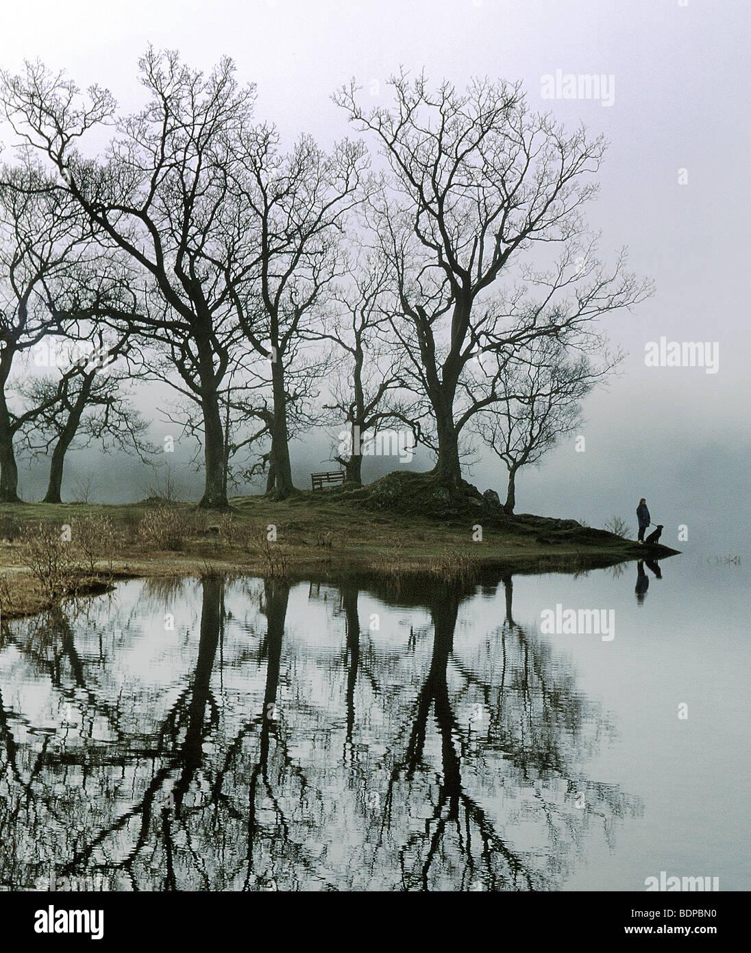 Une figure avec un chien debout à côté d'un lac avec des arbres Photo Stock