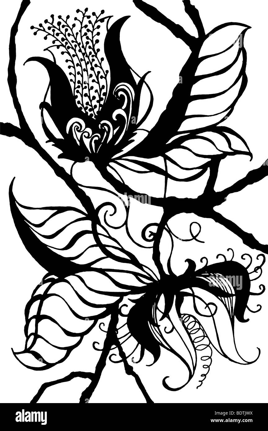 Noir Sur Blanc Original Dessin De Fleurs Exotiques De