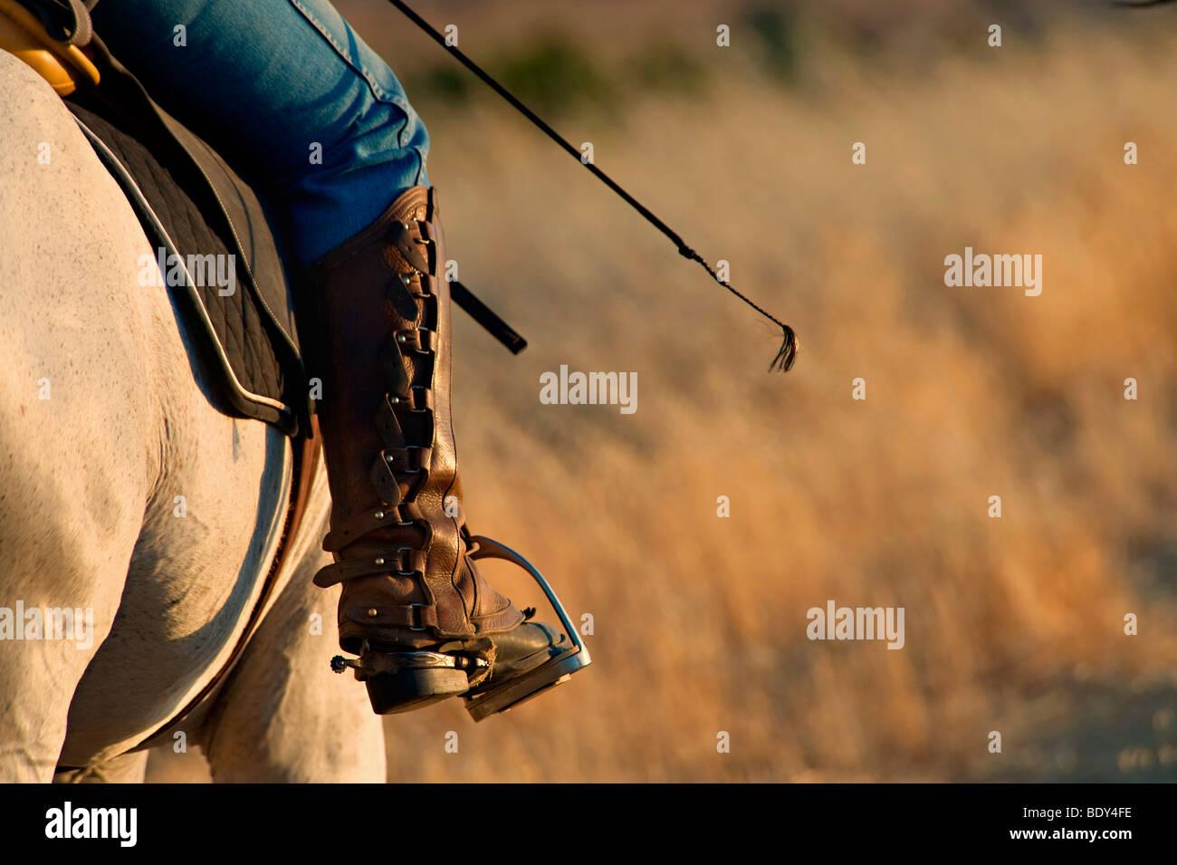 Les cavaliers équestres et étrier de démarrage Photo Stock
