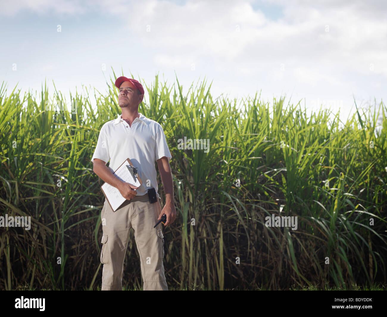 Superviseur avec Clip Board & canne à sucre Photo Stock