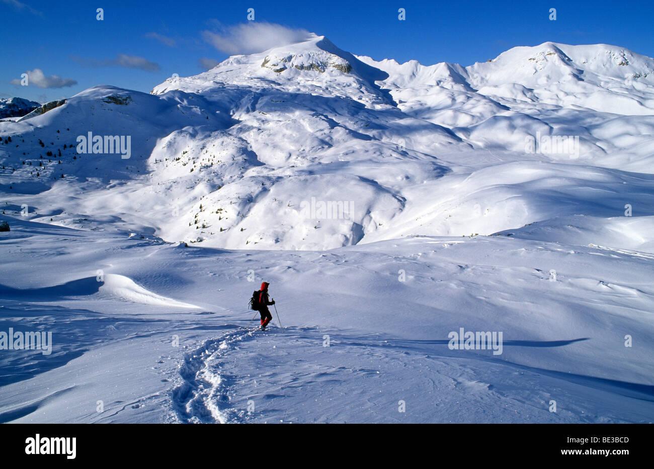 Walker en raquettes en face du Monte Sella de sennes, 2788m, sennes, Fanes-Senes-Prags Nature Park, Dolomites, Sout Photo Stock